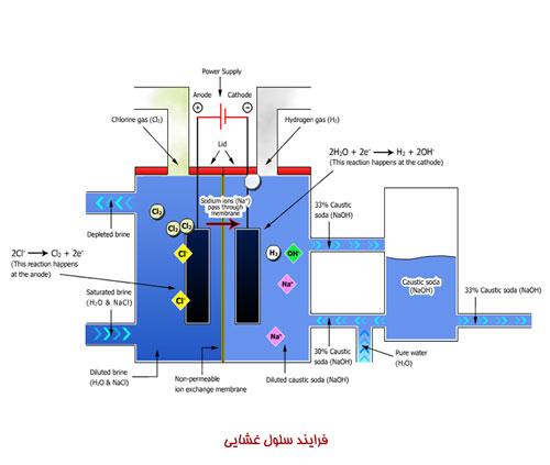 فرایند سلول غشایی